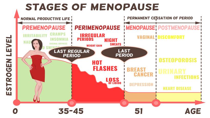 perimenopause - WomenWorking